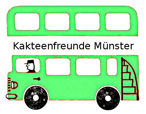 kaktus-bus